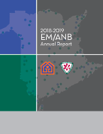 Emanb Annualreport 2018 19